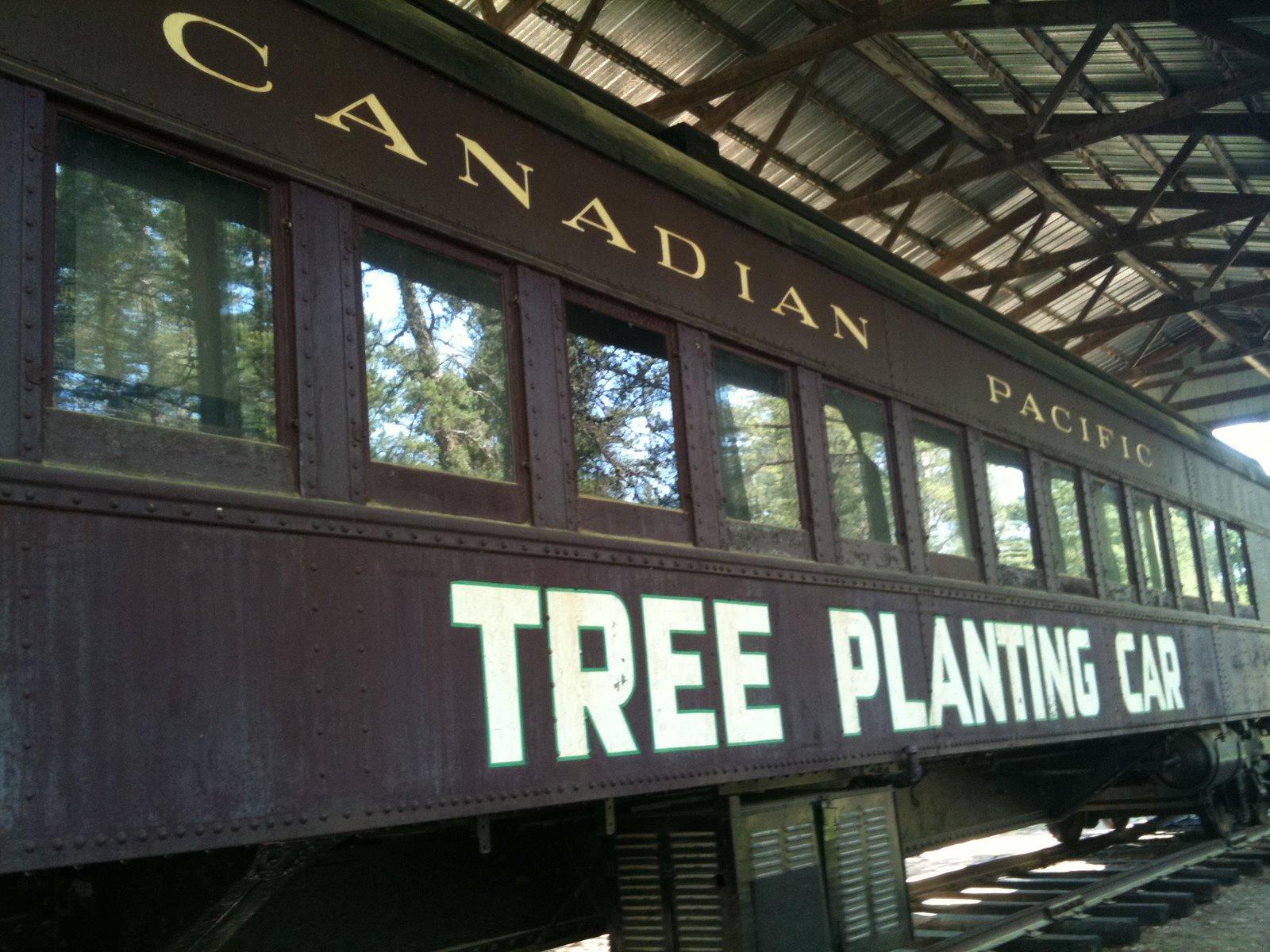 Tree Planting Car