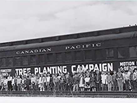 Tree Planting Car 50s